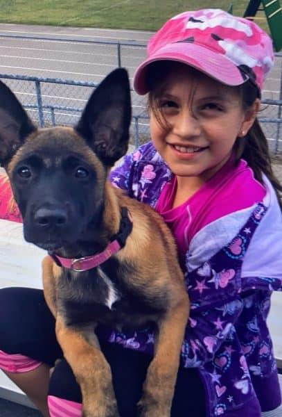 Little girl wearing pink cap with an Ot Vitosha Malinois puppy wearing a pink collar