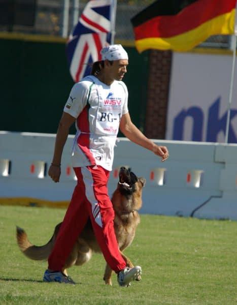 Ivan Balabanov at the German Shepherd World Championship 2008